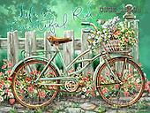 Dona Gelsinger, STILL LIFE STILLLEBEN, NATURALEZA MORTA, flowers, Blumen, flores, paintings+++++,USGE1559A,#I#,#F# ,bicycles, ,everyday