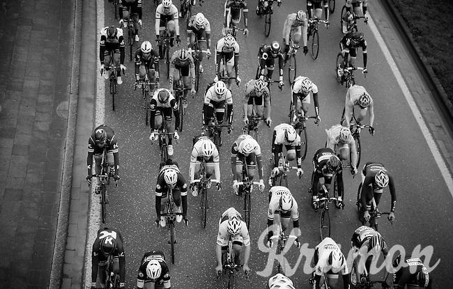 peloton from above<br /> <br /> 104th Scheldeprijs 2016