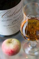 Europe/France/Normandie/Basse-Normandie/14/Calvados/Pays d'Auge/Cambremer: Vieux Calvados du Pays d'Auge de chez Christian Drouin et pomme