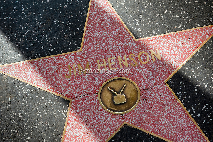 Jim Henson, Hollywood, Boulevard, TV Muppet Creator