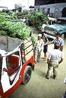 COLOMBIA - Armenia , mercato delle banane banana market in Armenia. uomini contrattano al mercato.