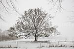 Harpenden & Surrounding Area  Snow Dec 2010