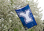 1004-61 157<br /> <br /> April GCS 2010<br /> <br /> Y Flag<br /> <br /> Photo by Mark Philbrick/BYU<br /> <br /> &copy; BYU PHOTO 2010<br /> All Rights Reserved<br /> photo@byu.edu  (801)422-7322