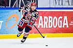 S&ouml;dert&auml;lje 2013-12-12 Ishockey Hockeyallsvenskan S&ouml;dert&auml;lje SK - Mora IK :  <br /> S&ouml;dert&auml;lje 70 Peter Nolander <br /> (Foto: Kenta J&ouml;nsson) Nyckelord:  portr&auml;tt portrait