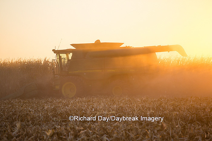 63801-06709 John Deere combine harvesting corn at sunset, Marion Co., IL