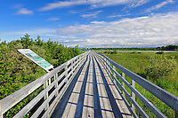 Boardwalk over marsh<br /> Marais de Tikouamis<br /> Quebec<br /> Canada