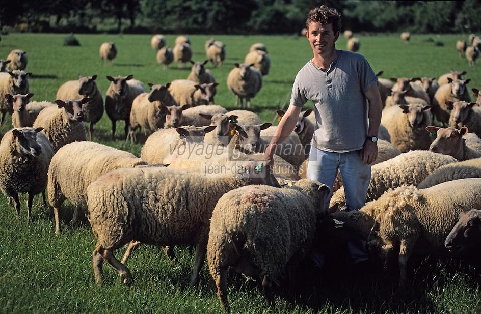 Europe/France/Bretagne/56/Morbihan/Presqu'île de Rhuys: La ferme du Menguen - Pascal Rio et ses moutons [Non destiné à un usage publicitaire - Not intended for an advertising use]