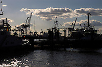 Silhouetted cranes,tugs against backlit clouds, Hamburg, Germany.