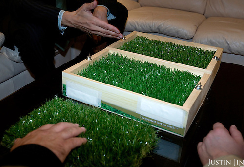 An offcial shows artificial turf that covers the Luzhniki stadium. England will play Russia in October 2007 in the Euro 2008 match on this turf.