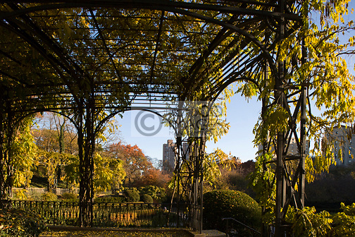 ARBOR CONSERVATORY GARDEN CENTRAL PARK MANHATTAN NEW YORK CITY USA