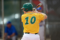 North Dakota State Bison first baseman Mason Pierzchalski (10) at bat during a game against the Central Connecticut State Blue Devils on February 23, 2018 at North Charlotte Regional Park in Port Charlotte, Florida.  North Dakota State defeated Connecticut State 2-0.  (Mike Janes/Four Seam Images)