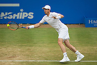 ANDY MURRAY (GBR)<br /> <br /> TENNIS - AEGON CHAMPIONSHIPS - QUEENS - ATP - ATP500 - CHAMPIONSHIPS-GRASS - LONDON - UNITED KINGDOM - 2016  <br /> <br /> <br /> <br /> &copy; TENNIS PHOTO NETWORK