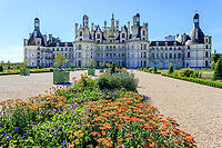 France, Loire-et-Cher (41), Chambord, château de Chambord, les jardins à la française, parterre de plantes vivaces (Achillée millefeuille) bordé de fusains et topiaires d'if