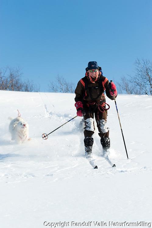 Dame kjører på ski i løssnø. ---- Woman skiing in soft snow.
