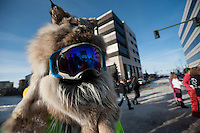 A competitor awaits his turn to dodge hooves and antlers during the 7th Annual Fur Rendezvous Running of the Reindeer in downtown Anchorage, Alaska.