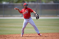 St. Louis Cardinals Breyvic Valera (8) during a Minor League Spring Training game against the Miami Marlins on March 26, 2018 at the Roger Dean Stadium Complex in Jupiter, Florida.  (Mike Janes/Four Seam Images)
