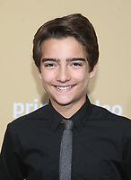 "LOS ANGELES, CA - JANUARY 13: Elias Harger, at the Premiere Of Amazon Studios' ""Troop Zero"" at Pacific Theatres at The Grove in Los Angeles, California on January 13, 2020. <br /> CAP/MPIFS<br /> ©MPIFS/Capital Pictures"
