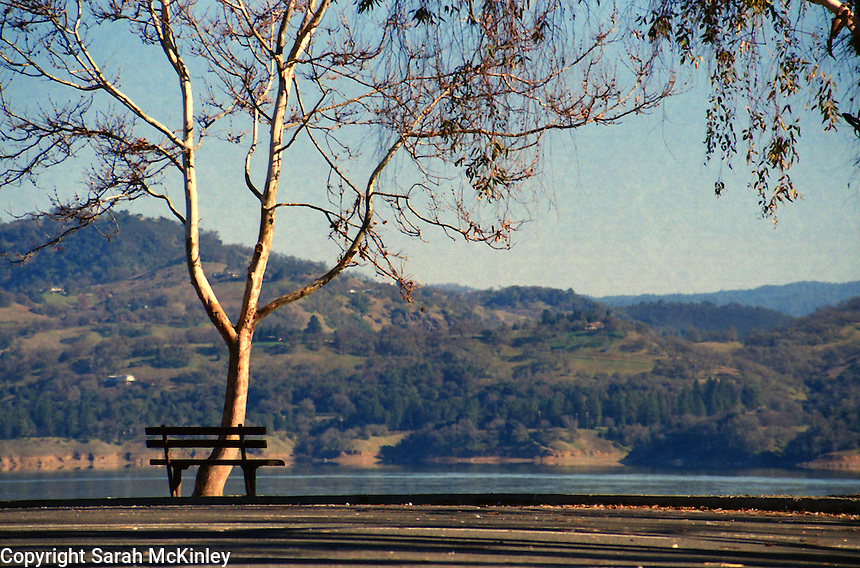 A quiet moring scene of a bench with a View of Lake Mendocino.