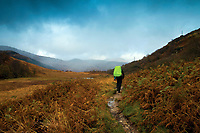 The West Highland Way near Inverarnan, Loch Lomond and the Trossachs National Park