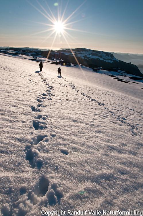 Brevandrere i kveldslys på restene av Nordmannsjøkulen på Seiland. ---- People on the remains of the glacier Nordmannsjøkulen on Seiland.