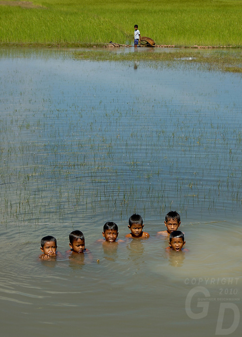 Images from the Book Journey Through Colour and Time, children playing in the rice fields near Siam reap Cambodia
