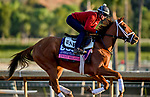 October 27, 2019 : Breeders' Cup Juvenile Fillies Turf entrant Sweet Melania, trained by Todd A. Pletcher, exercises in preparation for the Breeders' Cup World Championships at Santa Anita Park in Arcadia, California on October 27, 2019. Scott Serio/Eclipse Sportswire/Breeders' Cup/CSM