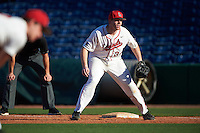 Ball State Cardinals first baseman Caleb Stayton (34) during a game against the Louisville Cardinals on February 19, 2017 at Spectrum Field in Clearwater, Florida.  Louisville defeated Ball State 10-4.  (Mike Janes/Four Seam Images)