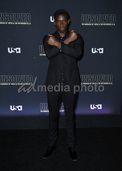 "22 February 2018 - Hollywood, California - Damson Idris. USA Network's ""Unsolved: The Murders of Tupac & The Notorious B.I.G."" held at Avalon Hollywood. Photo Credit: Birdie Thompson/AdMedia"
