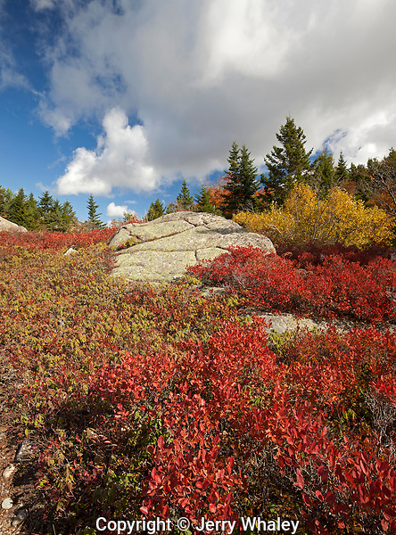 Parkman Mountain Trail, Acadia NP, Autumn, Maine