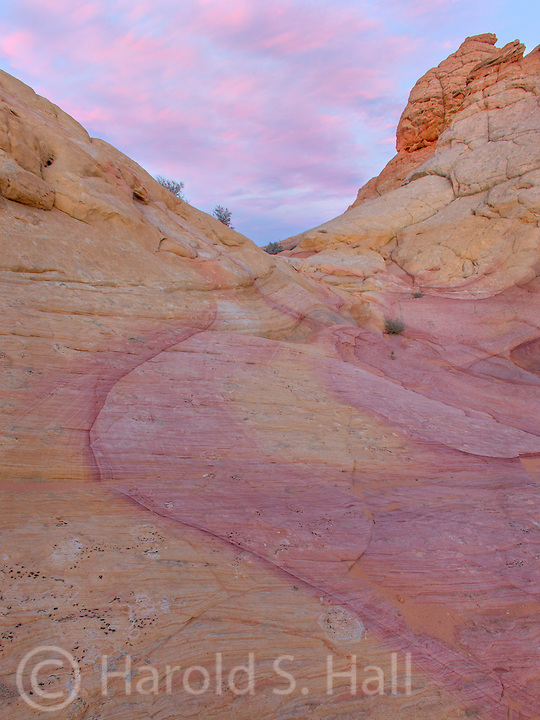 Vermillion Cliffs in the Coyote Buttes area of Arizona provide many opportunities for a hikes in beautiful sandstone formations.  Paw Hole and Cottonwood are two great destinations when one fails to get one of the twenty allocated passes into the world famous Wave.