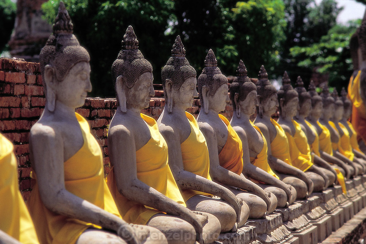 North of Thailand's capital city of Bangkok, at the temple complex of Wat Chae Wattanaram, rows of stone Buddhas (a common image in this overwhelmingly Buddhist nation) testify to his enlightenment, Wat Chae Wattanaram, Thailand. (Man Eating Bugs page 38,39)