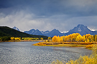 """Fall colors, Grand Tetons, clearing storm, and Oxbow Bend in Autumn, Jackson Hole, Wyoming<br /> <br /> For production prints or stock photos click the Purchase Print/License Photo Button in upper Right; for Fine Art """"Custom Prints"""" contact Daryl - 208-709-3250 or dh@greater-yellowstone.com"""