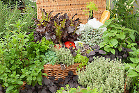 Wicker Picnic Basket of Herbs, Vegetables