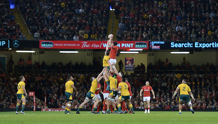Wales' Adam Beard claims the line out <br /> <br /> Photographer Ian Cook/CameraSport<br /> <br /> Under Armour Series Autumn Internationals - Wales v Australia - Saturday 10th November 2018 - Principality Stadium - Cardiff<br /> <br /> World Copyright © 2018 CameraSport. All rights reserved. 43 Linden Ave. Countesthorpe. Leicester. England. LE8 5PG - Tel: +44 (0) 116 277 4147 - admin@camerasport.com - www.camerasport.com