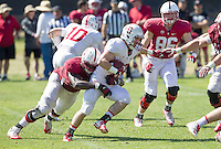 STANFORD, CA - MARCH 7, 2014--Stanford's Jordan Watkins and Pat McFadden, during Open Football Practices at Stanford University.