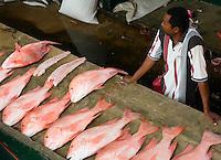 Seychelles, Island Mahe, capital Victoria: Sir Selwyn Selwyn-Clarke Market - fish market<br />