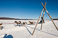 Tom Lesatz runs on the Yukon River past a tripod trail marker just prior to the Kaltag checkpoint during the 2010 Iditarod