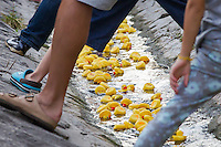 Viewers watch a thousand rubber ducks float on a creek during a charity race of the Rotary Club in Szentendre (about 20 km North of the capital city Budapest), Hungary on August 31, 2013. ATTILA VOLGYI