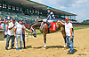 Shack Up #4 winning at Delaware Park on 7/8/17 before being disqualified and #1 Spring Mtn Mist was put up for the win