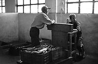 ROMANIA, Delta of Danube, Mila 23, April 2000..A fisherman sells his fish at the state cooperative..ROUMANIE, Delta du Danube, Mila 23, Avril 2000..Un pecheur vend ses poissons à la coopérative d'Etat..© Bruno Cogez