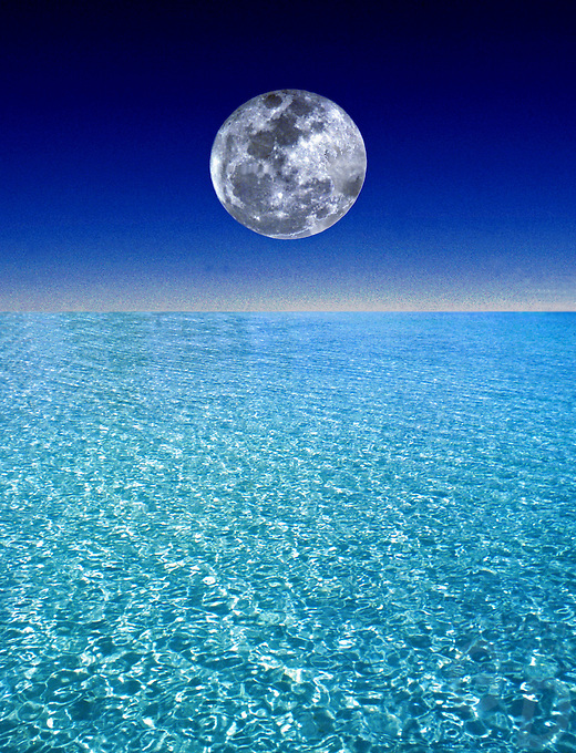 Environment - Composite illustrating our Ocean Environment with a ...