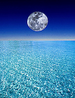 Environment - Composite illustrating our Ocean Environment with a full Moon