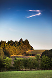 USA, Oregon, Willamette Valley, agricultural landscape in wine country, Gaston