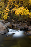 Merced River in the fall