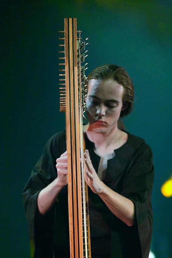 Mael  LHOPITEAU harpe celtique