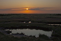 Stiffkey, Norfolk, England, 08/08/2009..Sunrise over Stiffkey salt marshes.