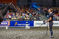 """Tristen Tucker: Veterinary Associates Dressage Masterclass - """"Being controlled or in control of himself"""".2019 Equitana Auckland. ASB Showgrounds. Auckland. New Zealand. Friday 22 November. Copyright Photo: Libby Law Photography"""