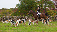 Barney's Joy hunt with the Norfolk Hunt Club