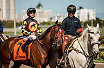 HALLANDALE BEACH, FL - March 3: Jersey Joe Bravo in town to ride She's Pretty Lucky in the Grade III Herecomesthebride Stakes at Gulfstream on March 3, 2018 in Hallandale Beach, FL. (Photo by Carson Dennis/Eclipse Sportswire/Getty Images.)