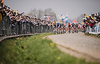 first passage up the Oude Kwaremont<br /> <br /> 103rd Ronde van Vlaanderen 2019<br /> One day race from Antwerp to Oudenaarde (BEL/270km)<br /> <br /> ©kramon